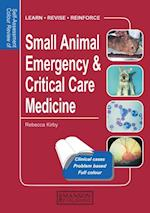 Small Animal Emergency & Critical Care Medicine (Self-assessment Colour Review)