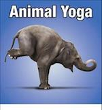 Animal Yoga af Willow Creek Press