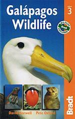 Galapagos Wildlife (Bradt Travel Guides (Wildlife Guides))