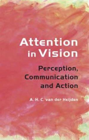 Attention in Vision
