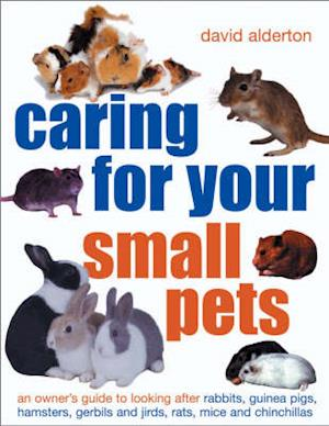 Bog, paperback Caring for Your Small Pets af David Alderton