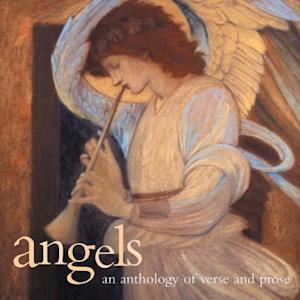 Bog, paperback Angels af Southwater