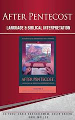 After Pentecost (Scripture & Hermeneutics Series) (SCRIPTURE AND HERMENEUTICS, nr. 02)