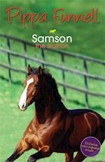 Tilly's Pony Tails: Samson (Tilly's Pony Tails, nr. 4)