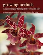 Growing Orchids: Successful Gardening Indoors and Out