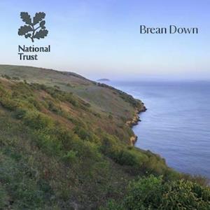 Bog, paperback Brean Down, Somerset af Nick Hanks