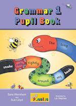 Grammar 1 Pupil Book (Jolly Grammar 1)