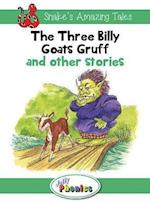 Jolly Phonics Paperback Readers, Level 4 Inky Mouse & Friends (Snakes Amazing Tales, nr. 3)