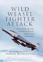 Wild Weasel Fighter Attack