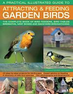 A Practical Illustrated Guide to Attracting & Feeding Garden Birds af Jen Green, Dr Jen Green