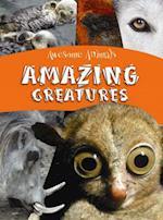 Amazing Creatures (Awesome Animals)