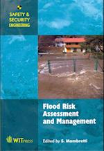 Flood Risk Assessment and Management (Safety and Security Engineering)
