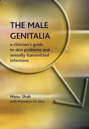 The Male Genitalia