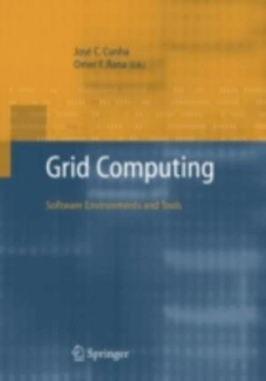 Grid Computing: Software Environments and Tools