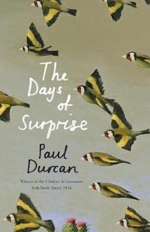 The Days of Surprise