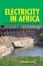 Electricity in Africa (African Issues)