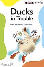 Ducks in Trouble (Pandas)