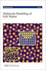 Multiscale Modelling of Soft Matter (Faraday Discussions, nr. 144)
