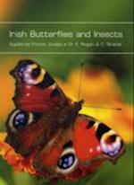 Irish Butterflies and Insects