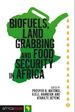 Biofuels, Land Grabbing and Food Security in Africa (Africa Now)