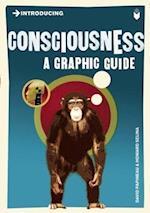 Introducing Consciousness (Introducing)
