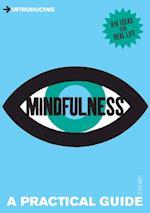 Introducing Mindfulness (Introducing)