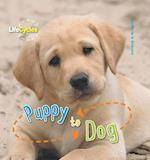 Life Cycles: Puppy to Dog (Lifecycles, nr. 12)