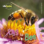 Life Cycles: Egg to Bee (Lifecycles, nr. 12)
