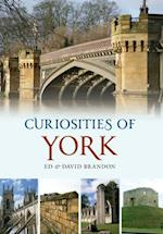 Curiosities of York af David Brandon, Ed Brandon