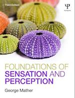 Foundations of Sensation and Perception (Zones of Religion)