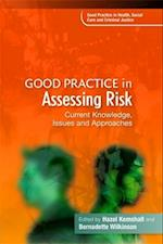 Good Practice in Assessing Risk af Bernadette Wilkinson, Hazel Kemshall, Jacki Pritchard