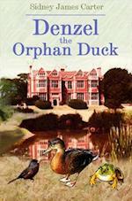 Denzel the Orphan Duck