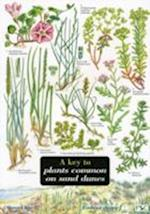 Key to Plants Common on Sand Dunes (Field Studies Council Occasional Publications S, nr. 43)