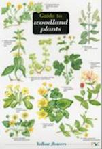 Guide to Woodland Plants (Field Studies Council Occasional Publications S, nr. 50)
