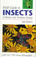 Field Guide to Insects of Britain and Northern Europe (Field Guide)