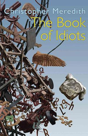 Bog, paperback The Book of Idiots af Christopher Meredith