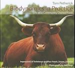 Biodynamics in Practice