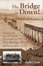 The Bridge is Down! (Railway Heritage)