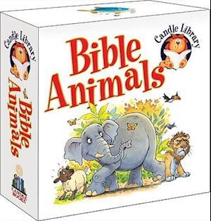 Bog, papbog Candle Library Bible Animals af Juliet David