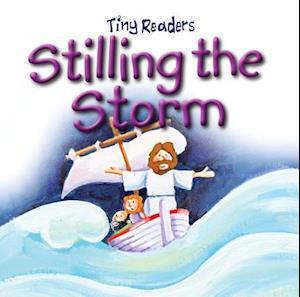Bog, ukendt format Stilling the Storm af Juliet David