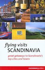 Flying Visits (Flying Visits Cadogan)