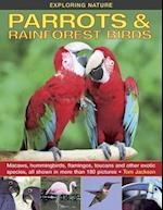 Exploring Nature: Parrots & Rainforest Birds