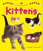 Say and Point Picture Boards: Kittens