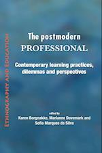 The postmodern professional: Contemporary learning practices, dilemmas and perspectives