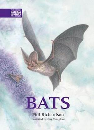 Bog, hardback Bats af Phil Richardson