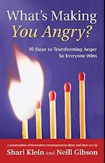 What's Making You Angry? (Nonviolent Communication Guides)