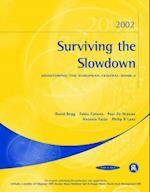 Surviving the Slowdown