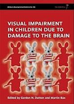 Visual Impairment in Children Due to Damage to the Brain (CLINICS IN DEVELOPMENTAL MEDICINE)