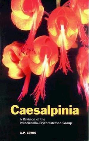 Caesalpinia