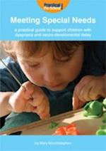 A Practical Guide to Support Children with Dyspraxia and Neurodevelopmental Delay (Meeting Special Needs)